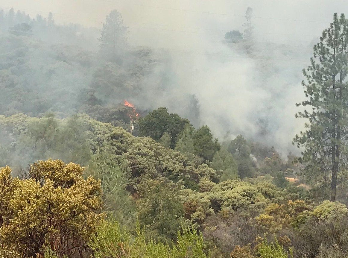 The fire actively burned on Quartz Hill Road Friday morning.