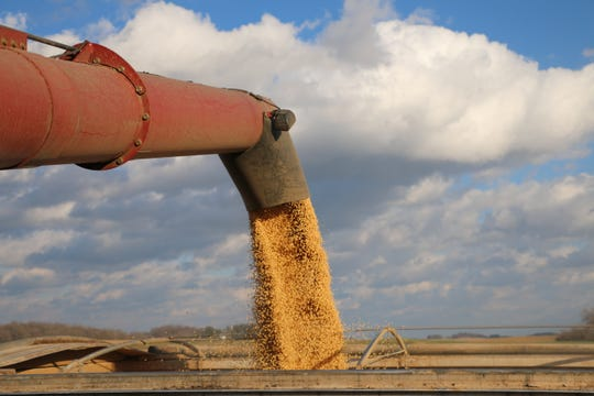 The Wisconsin Farmers Union Grain Committee offers some recommendations for our legislators and the Trump Administration as work continues on the Farm Bill.