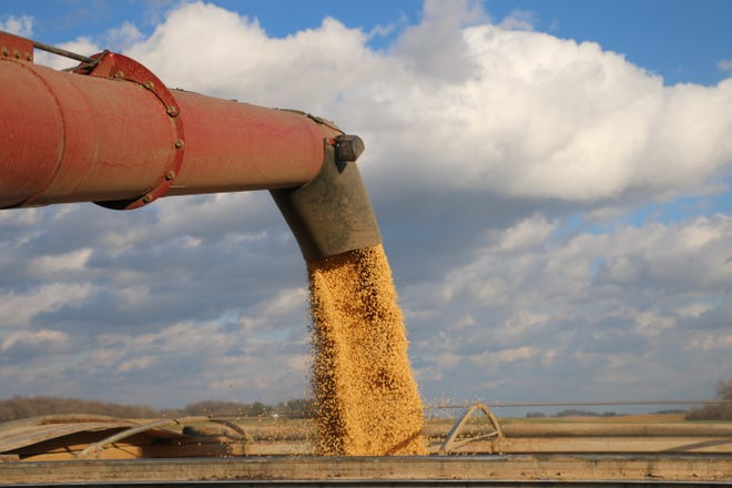 WI Rapids Grain, LLC is accused of defrauding Peoples State Bank and other financial institutions by exaggerating the value of its corn and soybean holdings.