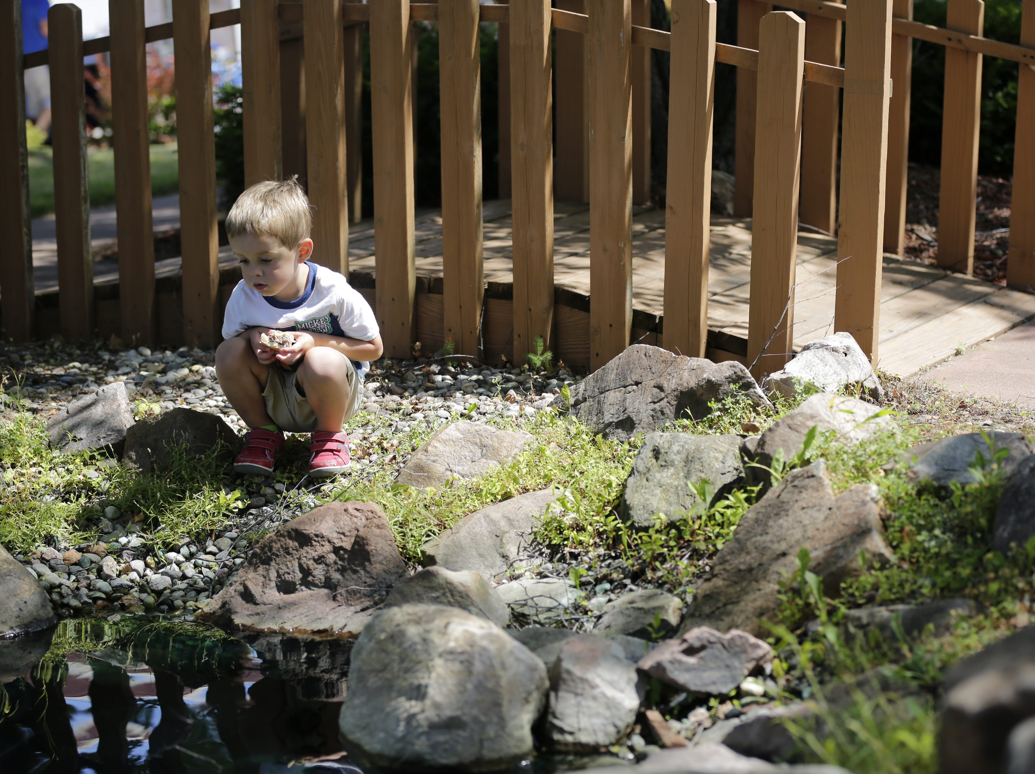 James Neuens, 3, eats a hamburger and watches the water in the pond next to City Hall during Hub City Days in downtown Marshfield Saturday, July 28, 2018.
