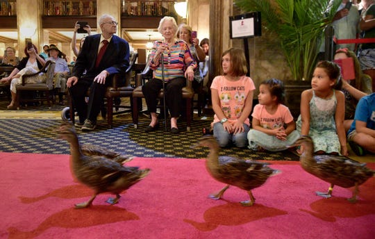 """July 28, 2018 - Minnie Opal Reid Hill (center) watches as the famous Peabody Ducks march toward the lobby's fountain. Hill celebrated her 100th birthday at The Peabody Hotel by being named honorary """"Duck Master."""" Hill had visited the historic hotel on numerous occasions, but today was the first time she witnessed the famous """"March of the Peabody Ducks."""" Hill also received from the city a declaration stating the day as Minnie Opal Reid Hill Day. """"I am overwhelmed with the attention, this is wonderful,"""" Hill said. """"Once in a lifetime."""""""