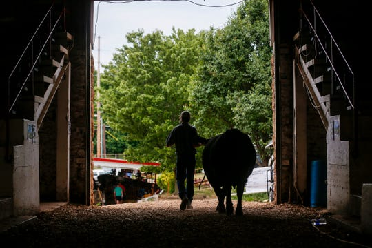 The Ozark Empire Fair announced plans Tuesday for several new projects. The first will be building a new 45,000-square-footbarn with a concrete floor.