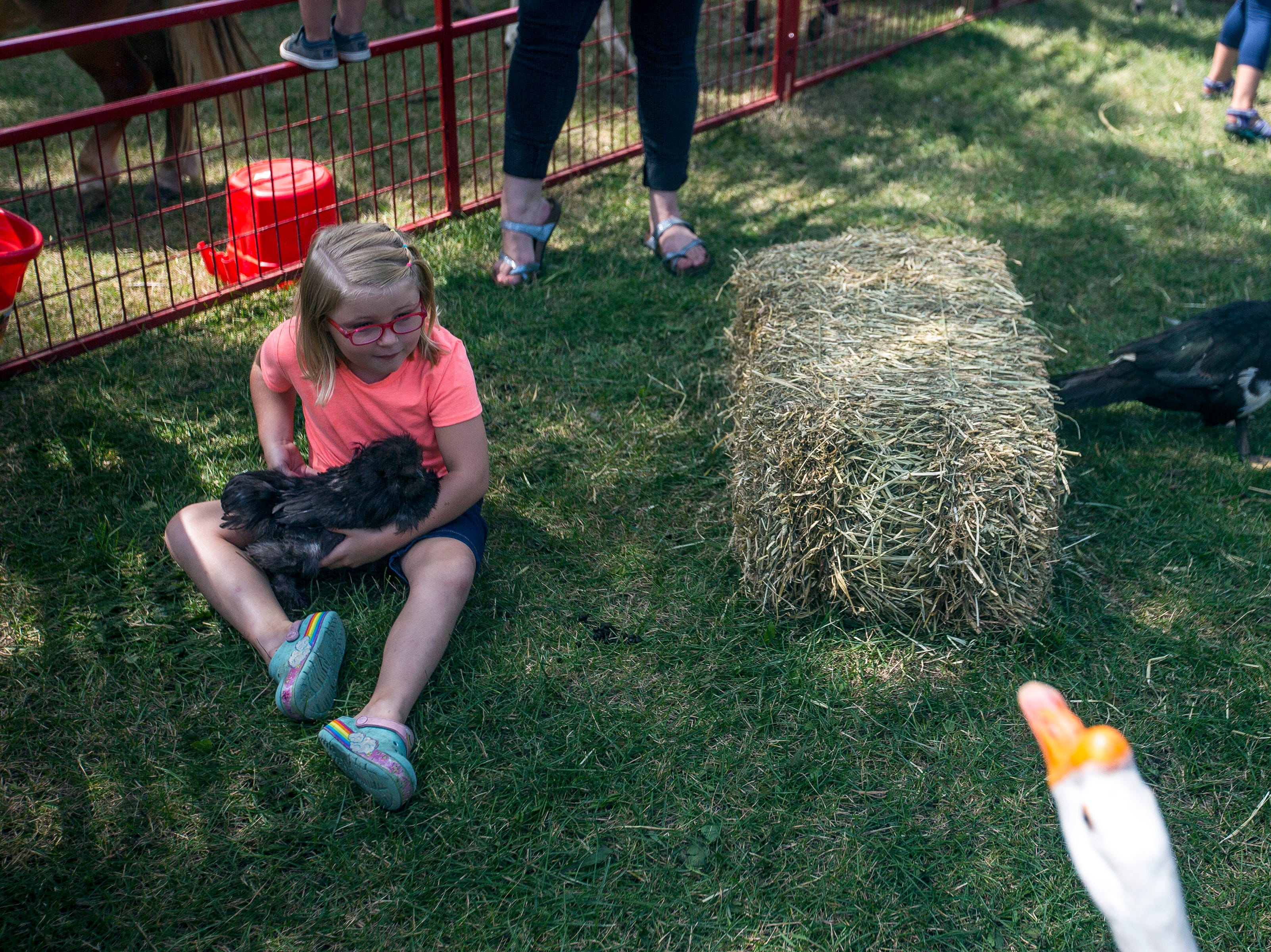 A girl pets a chicken at a petting zoo during Celebrate Plover at Lake Pacawa Park in Plover, Wis., July 28, 2018.