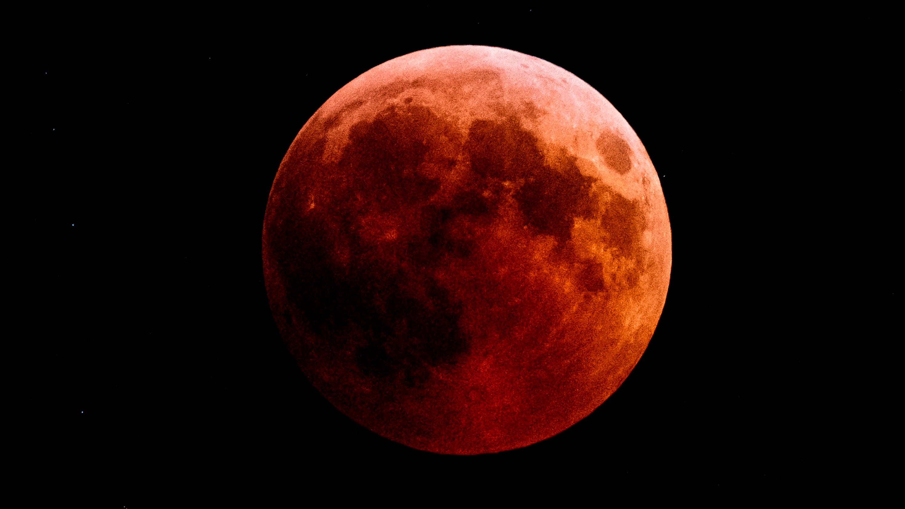 wolf blood moon january 2019 florida - photo #39