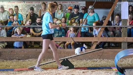 A 4-Her competes during the 4-H Rabbit Agility Show Saturday, July 28, at the Stearns County Fair in Sauk Centre.