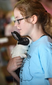 Hannah Culley holds one of her rabbits during the 4-H Rabbit Agility Show Saturday, July 28, at the Stearns County Fair in Sauk Centre.