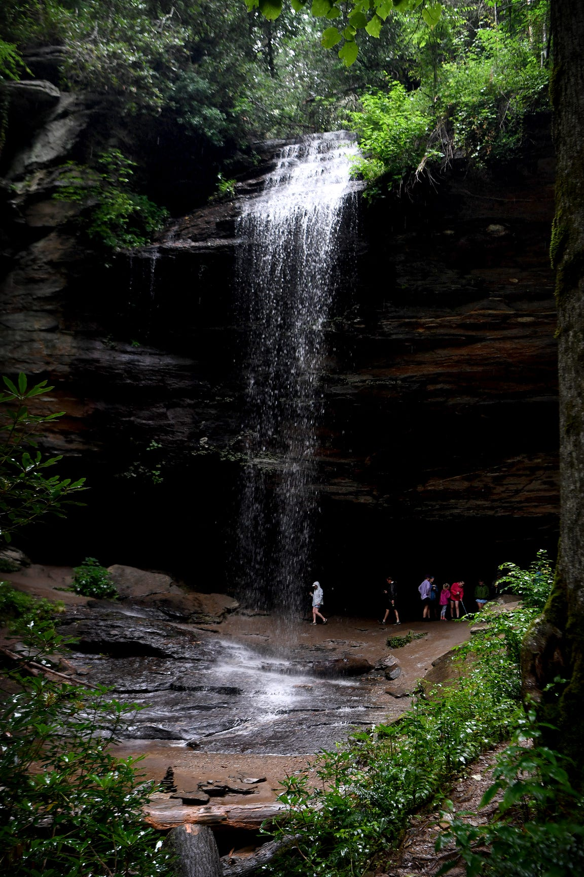 Hikers walk behind Moore Cove Falls beyond an observation railing in the Pisgah National Forest on Thursday, July 19, 2018. In both 2016 and 2017 a hiker climbed to the top of the waterfall and fell to his death.