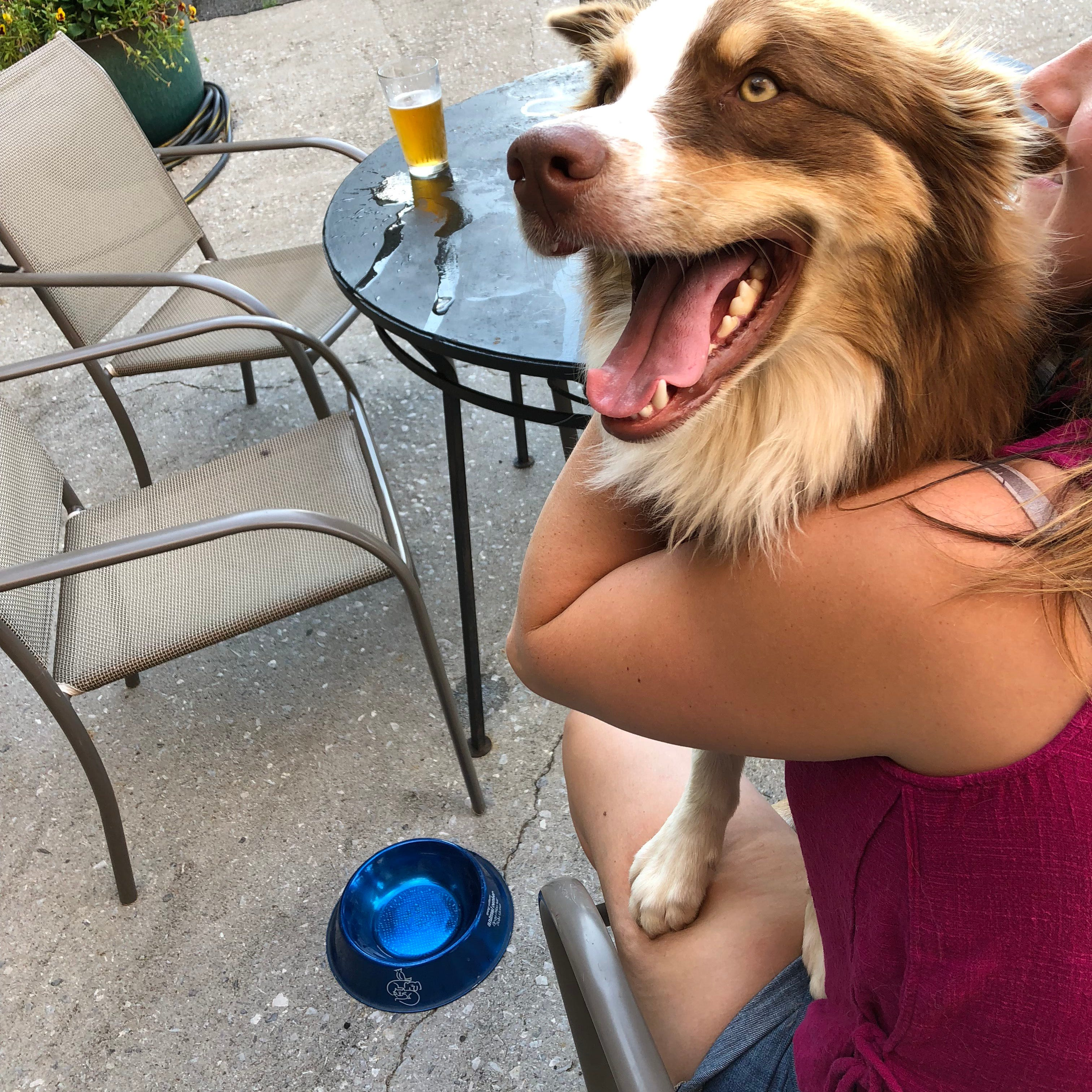 Here are 30-plus St. Cloud-area patios where you can bring your pooch