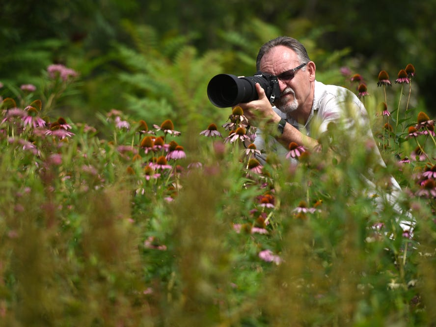 Henry Kocanda, of Carlstadt, photographs butterflies at the ninth annual Butterfly Day at DeKorte Park in Lyndhurst on Sunday, July 29, 2018.