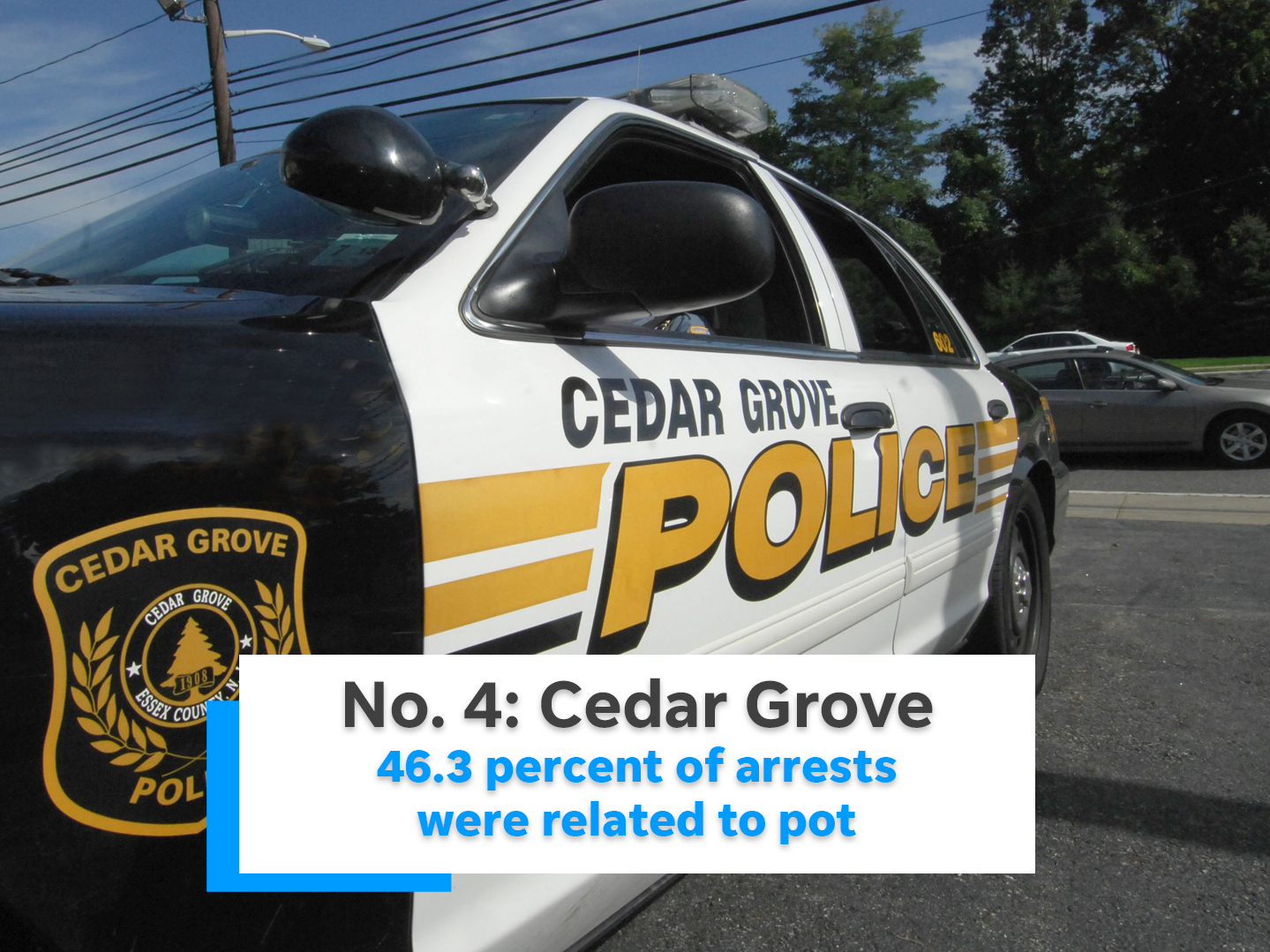 46.3 percent of Cedar Grove's arrests were related to marijuana.