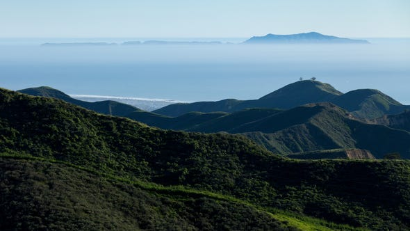 Although very close to a metropolitan area, the wildlife and plants in the Ventura Foothills remain relatively isolated and protected.