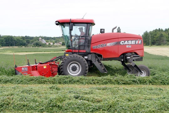 Delaying alfalfa harvest to about 10 percent bloom with reduced-lignin varieties, not only can provide higher root carbohydrates, but can also reduce crown damage from field traffic.