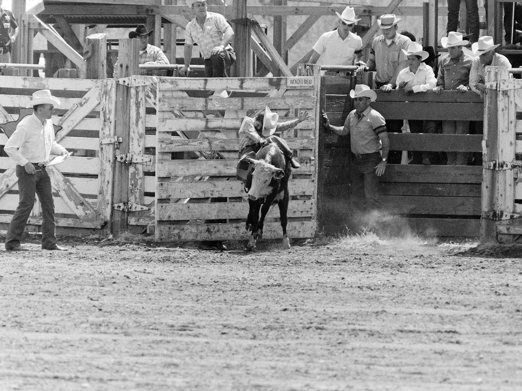 02/28/70JR Rodeo