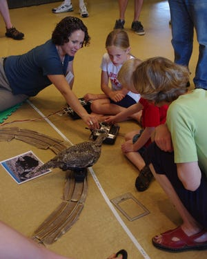 Researcher Gail Patricelli from the University of California Davis shows visitors a robotic grouse during the 2011 Animal Behavior Society conference outreach fair in Bloomington, Indiana.