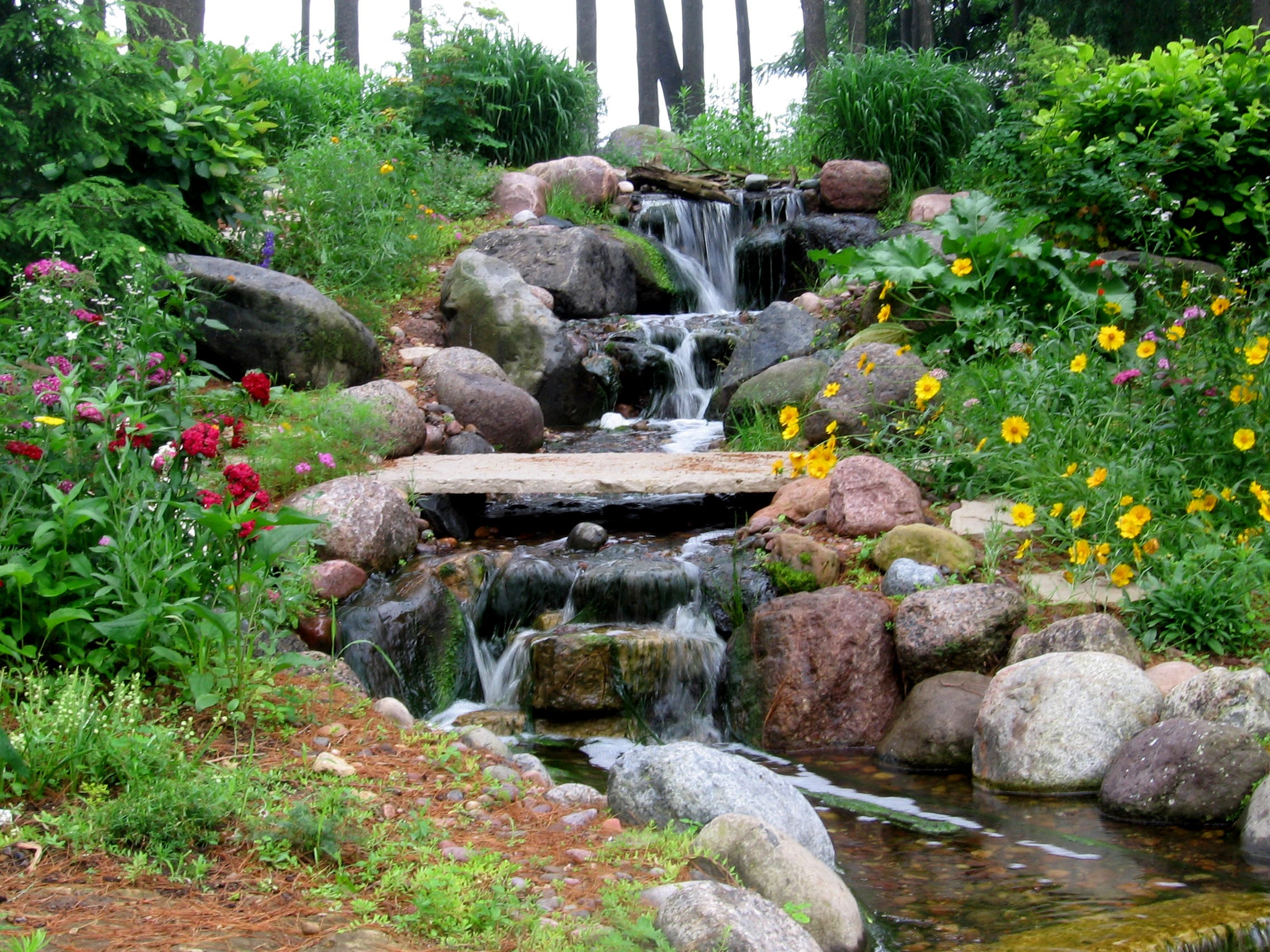 This stream and waterfalls flow down about 45 feet into a 15-by-25-foot pond that is home to dozens of koi. The waterfalls are built out of granite boulders and are about 3 feet wide and include a stone bridge over the stream.