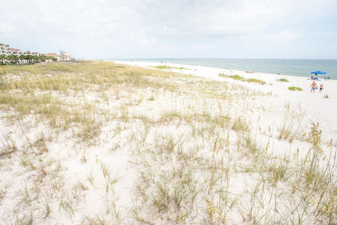 The Seafarer Owners Association filed a petition asking the court to reverse the Escambia County Board of Adjustment's decision to approveconditional use of property near the condos for public beach access.