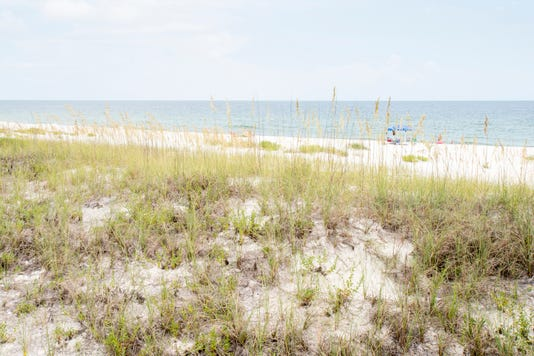 County Owned Beachfront Perdido Property