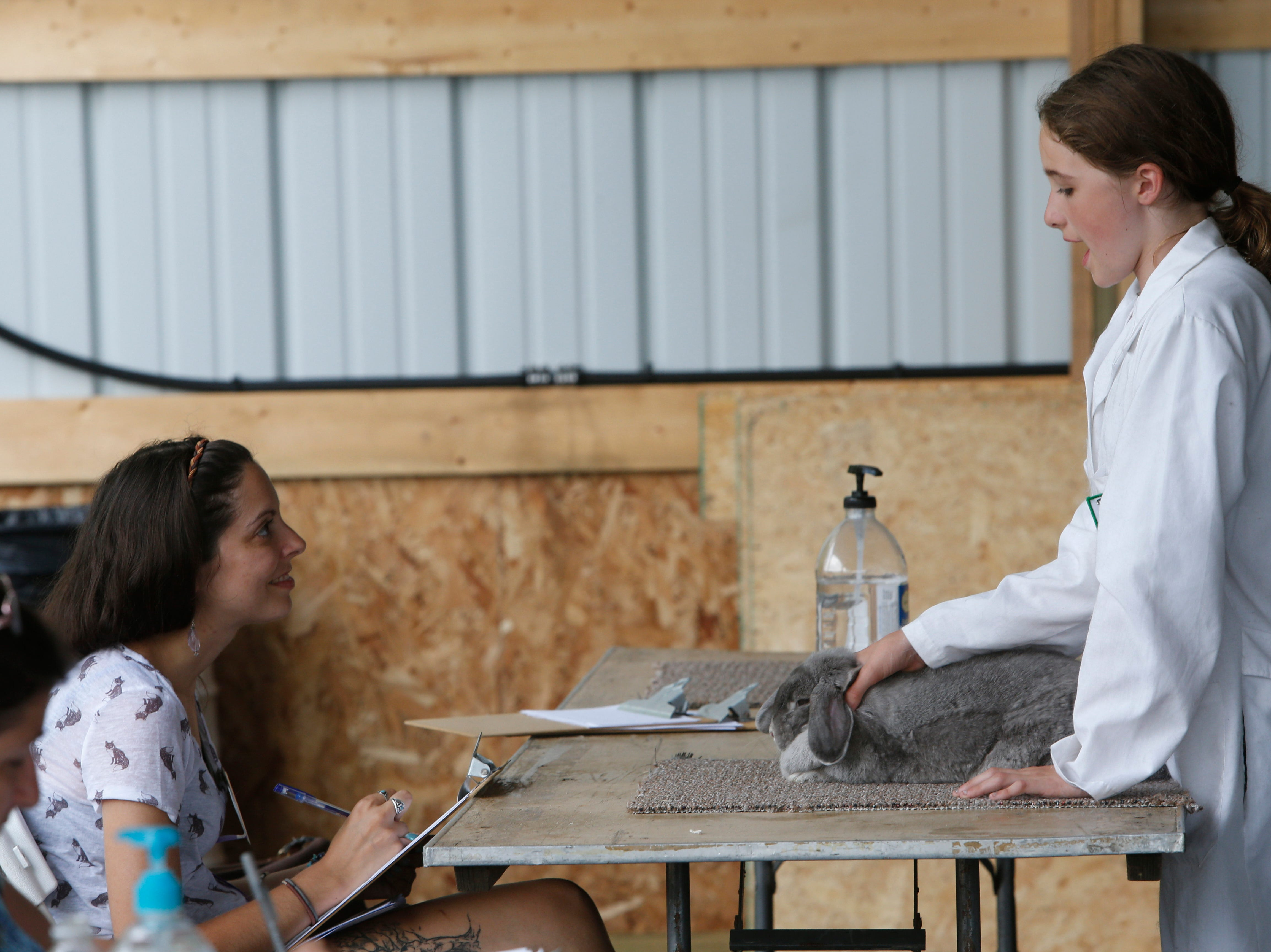 Loralee Reidy judges Teagan Halsley on how well she knows her rabbit during the Ulster County Fair in New Paltz on July 31, 2018.