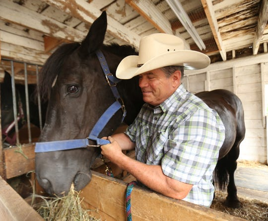 Sean Giery of Campbell Hall tends to his horse, Bob, during the Ulster County Fair in New Paltz on July 31, 2018.