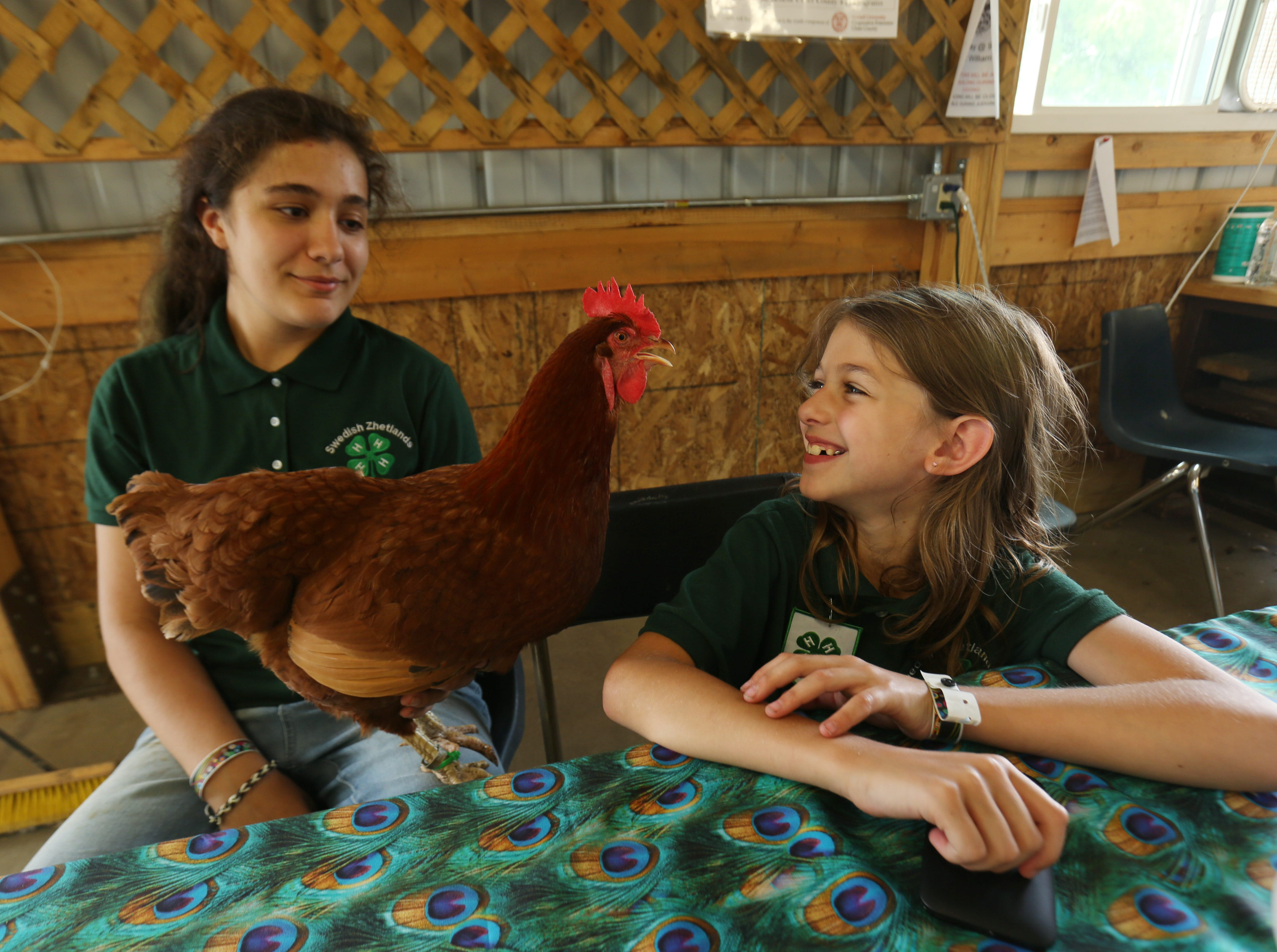 From left, Sophia Secone of Ulster Park and Hailey Loughlin of Shokan spend some time with Sophia's chicken before the crowds file in during the Ulster County Fair in New Paltz on July 31, 2018.