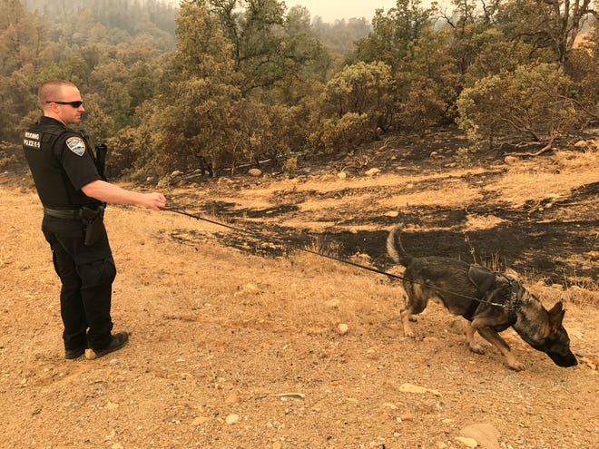 Redding Police officer Josh Tracy and police canine Njord take a break from patrolling the Salt Creek Heights subdivision July 31, 2018. The area was partially hit by the Carr Fire, which is forcing officers to do extra patrols to deter looters and help evacuated residents back into their homes.