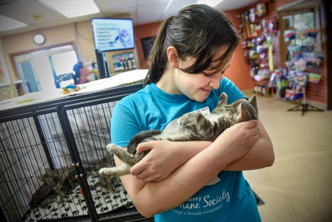 Sandy Watters holds a kitten Tuesday, July 31, at the Tri-County Humane Society. Watters, a customer service lead, recently won $5,000 in an online contest for the humane society.