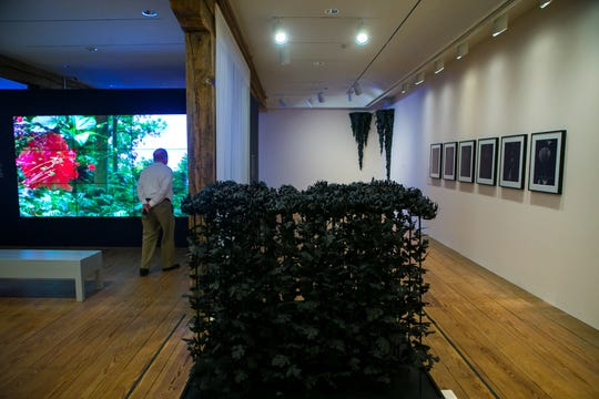 The Brandywine River Museum of Art has a new exhibit called Natural Wonders: the Sublime in Contemporary Art, showcasing the work of thirteen American artists who engage nature in all its fierce magnificence.