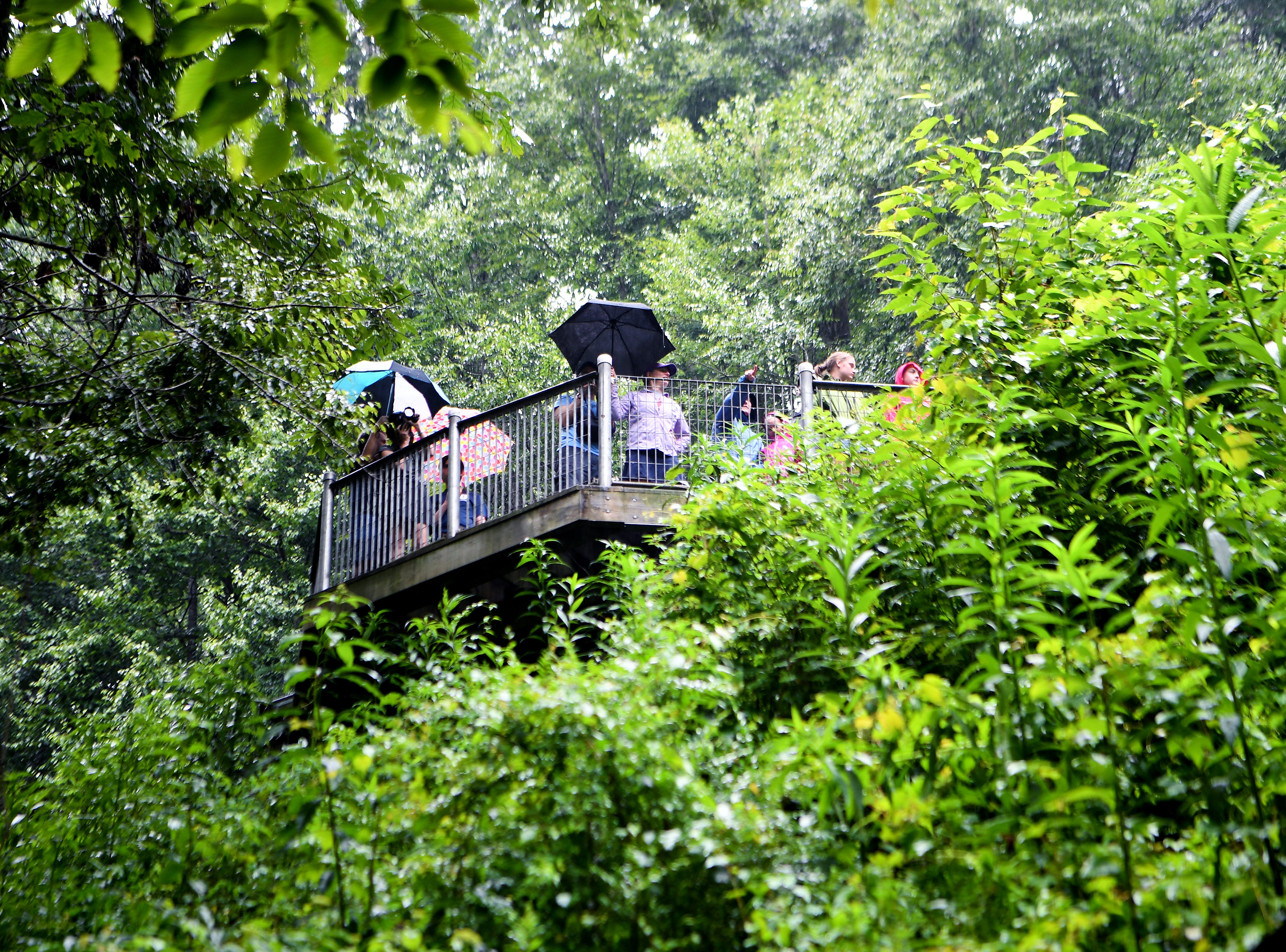 Visitors enjoy Looking Glass Falls from an elevated observation deck in the Pisgah National Forest in Transylvania County on Thursday, July 19, 2018.