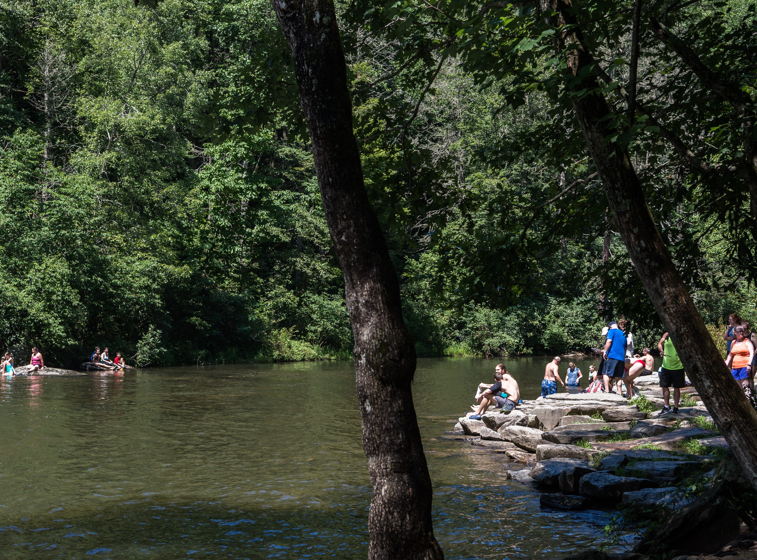 Visitors to DuPont State Recreational Forest sit and swim in the Little River by the base of Hooker Falls Thursday, July 26, 2018.