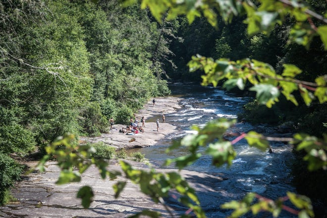 A group of visitors to DuPont State Recreational Forest sunbathe and swim downriver from Triple Falls in July. The state forest plans a 42-acre timber harvest this winter on the southern end of the forest.