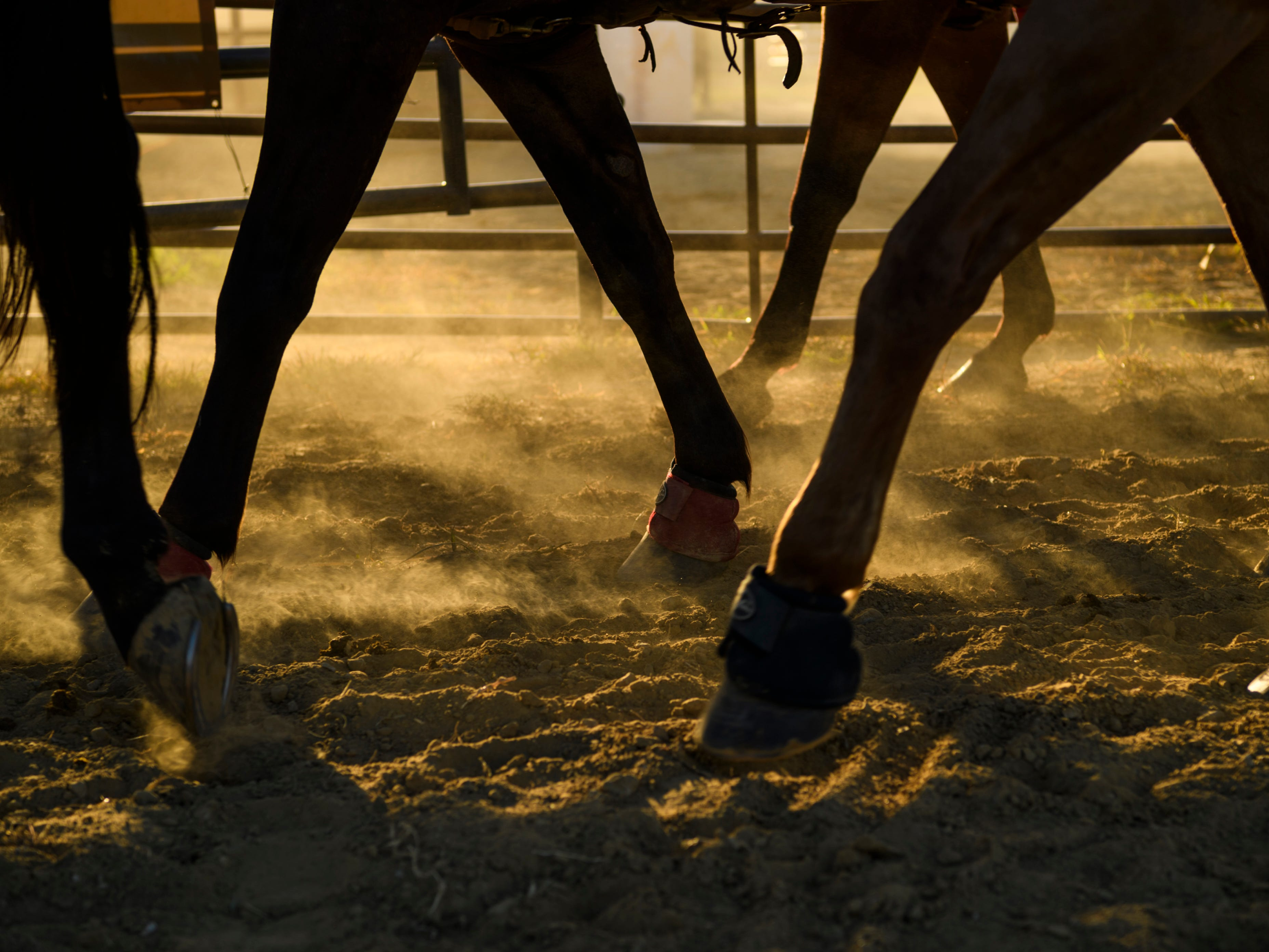 Horses tromp through the dirt as rodeo competitors slowly walk them into the ring for the singing of the national anthem to kick-off the rodeo at the Henderson County Fairgrounds in Kentucky, Saturday, July 7, 2018.