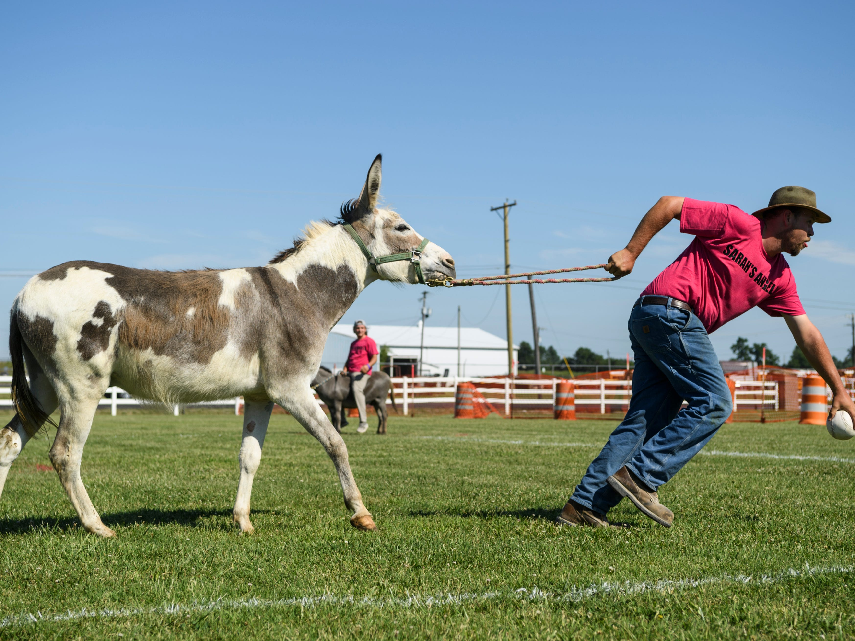 Sarah's Angels player Jonathan Elben leads his stubborn donkey to home plate during a Donkey Softball match against the Swamp Donkeys at the Henderson County Fairgrounds in Henderson, Ky., Saturday afternoon, July 7, 2018. A third-generation family-owned company called Circle A Donkeys from Henry, Tennessee, travels to 13 different states offering donkeys for use in basketball, polo, softball and donkey races.