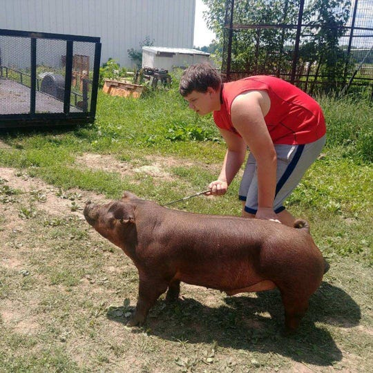 Waylon Klitzman, a sophomore at Evansville High School, works with Roo, a pig he sold at the Rock County 4-H Fair on July 27, donating the money from the sale to support Beat Nb in finding a cure for neuroblastoma.