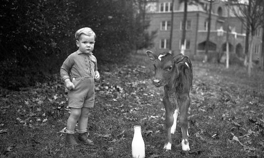 A young boy with his calf. All boys at Eliada were once given a cow to raise.