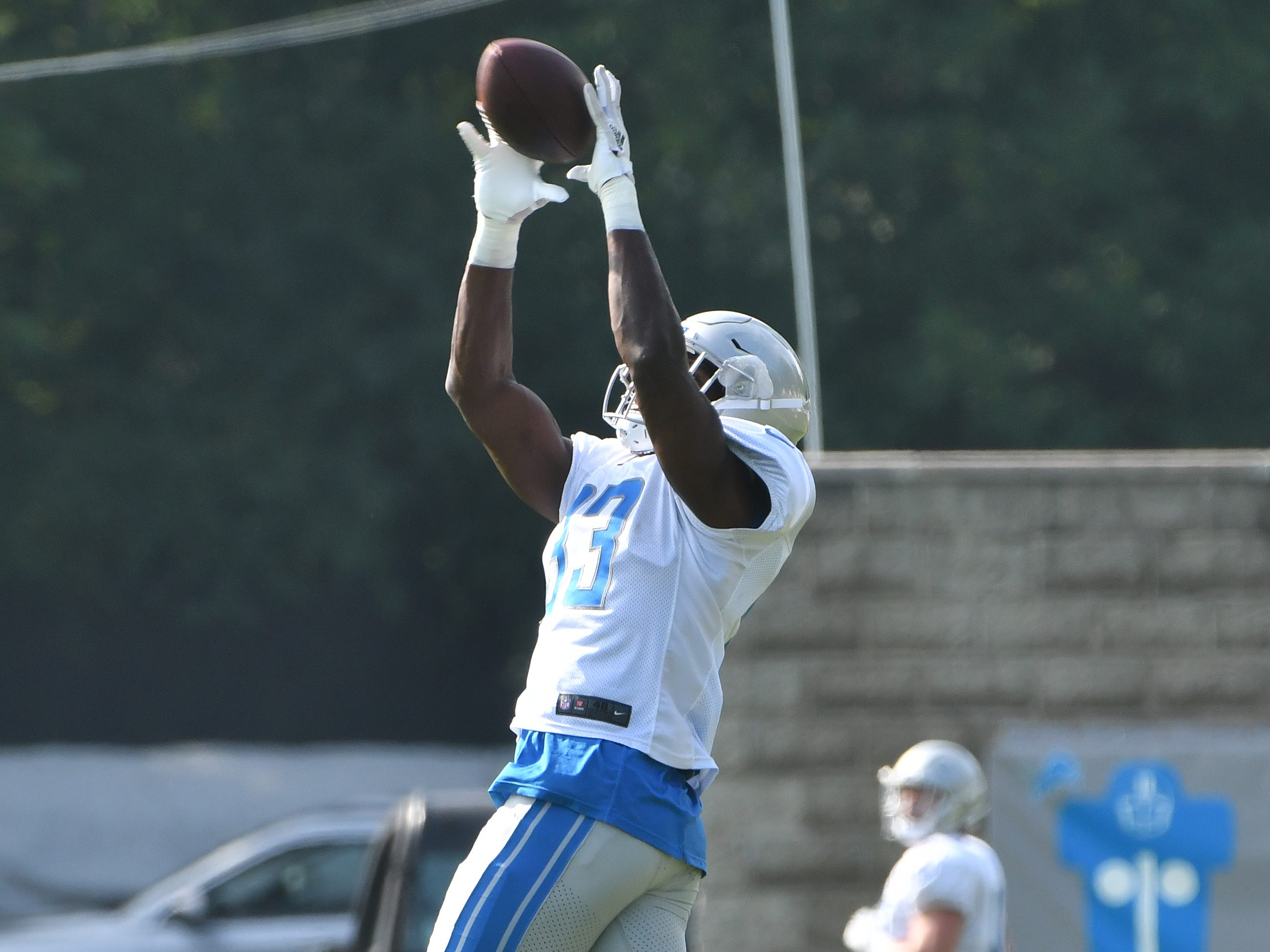 Lions running back Kerryon Johnson pulls down a reception.