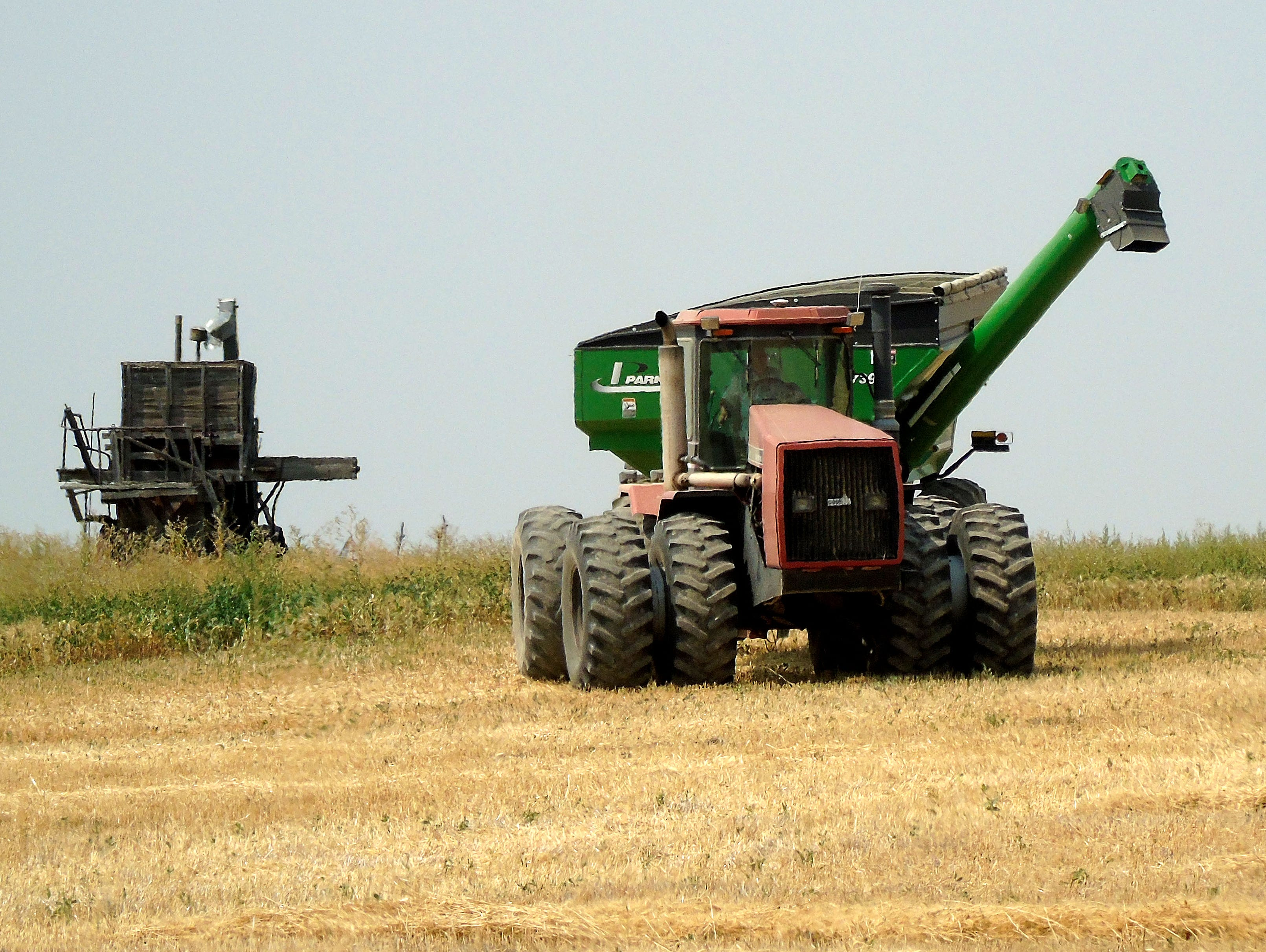 The old and new: What looks like an old wood threshing machine is parked in a field near a modern tractor pulling a grain cart during harvest near Carter.