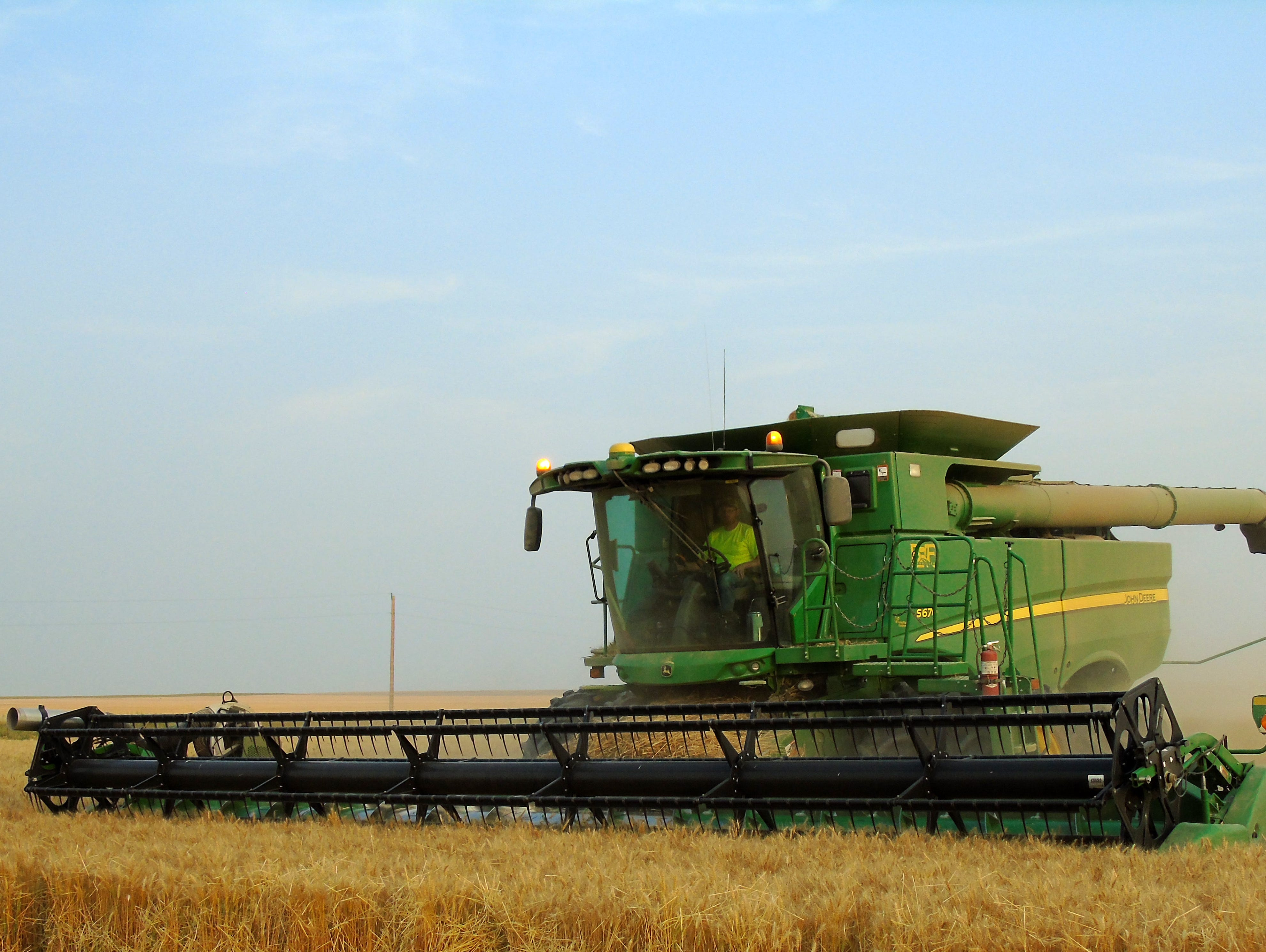 Kallan Bahnmiller combines winter wheat on the Bahnmiller Family Farms south of Big Sandy.