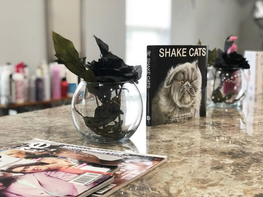 A quirky, fun cat theme is carried throughout the new Knoxville Beauty Collective salon in Fountain City.