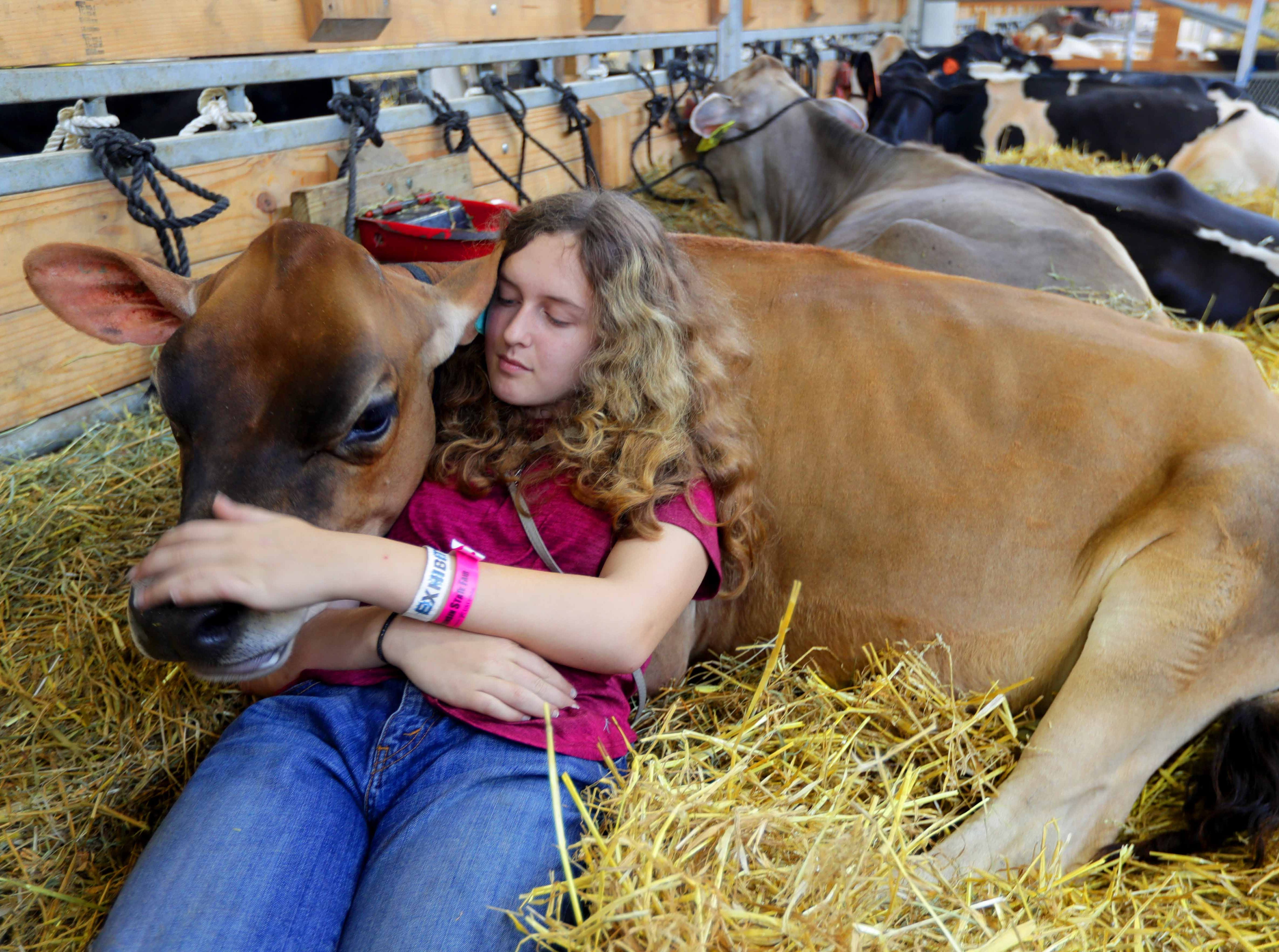 W-ANIMALS - Mckenna Layer, 14, of Richland center, Wis. and a member of the  Syresville Starlets 4-H club, takes a rest as she pets her nearly 1-year-old Jersey calf, Melody.  Youth from across the area from various 4-H groups and agriculture organizations, descended on the Wisconsin State Fair grounds in West Allis to ready their animals for shows. The opening of the 167th Wisconsin State Fair took place at the Wisconsin State Fair grounds in West Allis on Thursday, August 2, 2018. The fair runs through Sunday, August 12  -  Photo by Mike De Sisti / Milwaukee Journal Sentinel