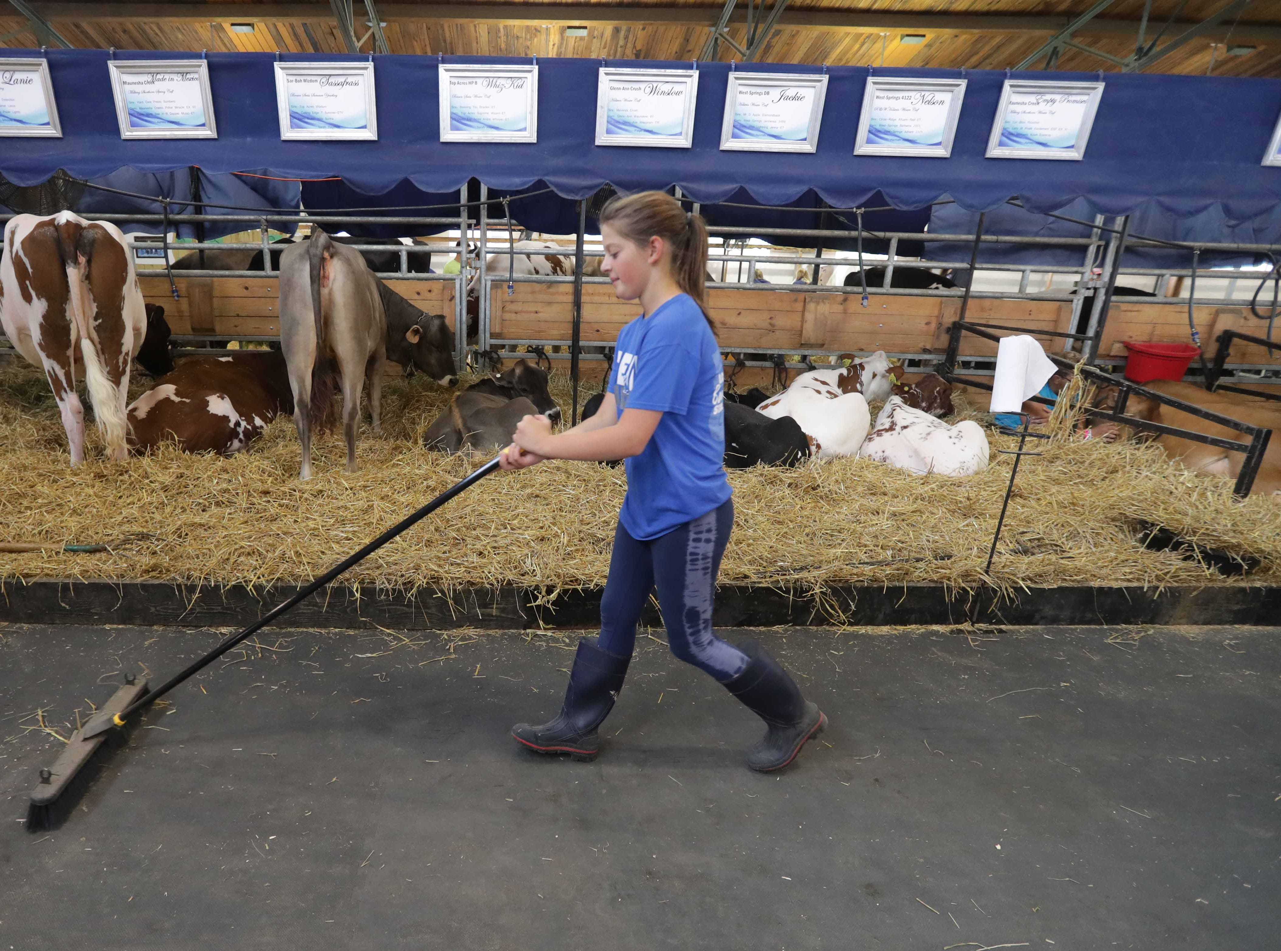 W-ANIMALS - Paige Sweatt, 13, from Dane, Wis. in Columbia County, and a in Lodi Challengers 4-H member sweeps up in the House of Moo area.  Youth from across the area from various 4-H groups and agriculture organizations, descended on the Wisconsin State Fair grounds in West Allis to ready their animals for shows. The opening of the 167th Wisconsin State Fair took place at the Wisconsin State Fair grounds in West Allis on Thursday, August 2, 2018. The fair runs through Sunday, August 12  -  Photo by Mike De Sisti / Milwaukee Journal Sentinel