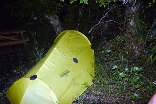 Photo of a tent belonging to a man whose body was found in Big Cypress National Preserve July 23.