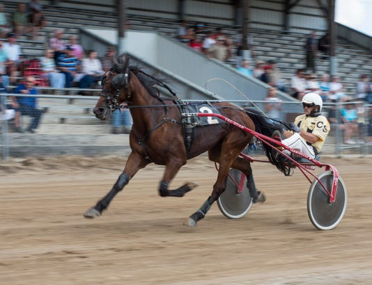 20180802 Harness Racing 0005