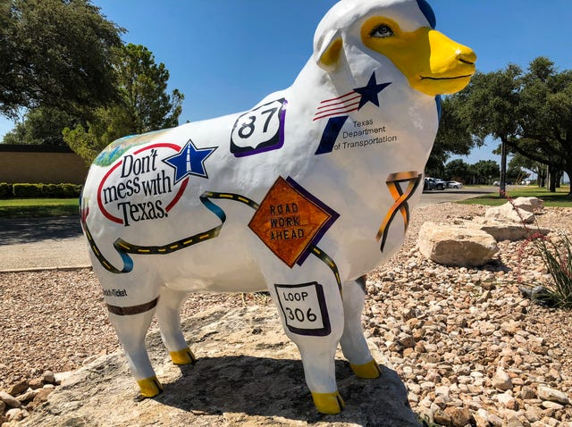 15 things ewe didn't know about San Angelo's sheep
