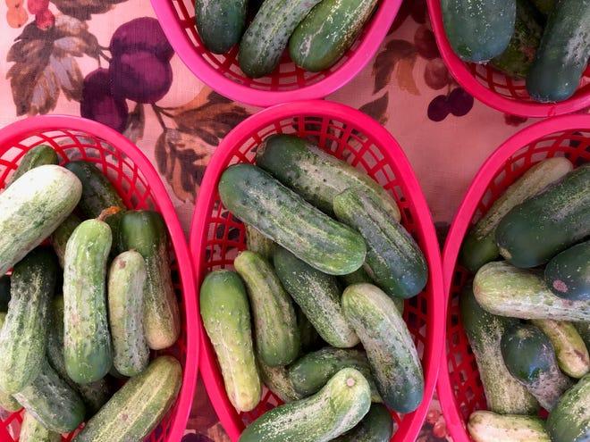 Baskets of cucumbers at Abilene Farmers Market in June 2018.