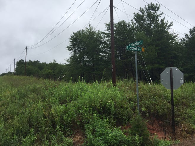 Property along Loblolly Circle in Greenville County is pictured on Friday, August 3, 2018. The city of Mauldin is lining up a potential annexation of the land, where a developer is planning construction of up to 761 homes.