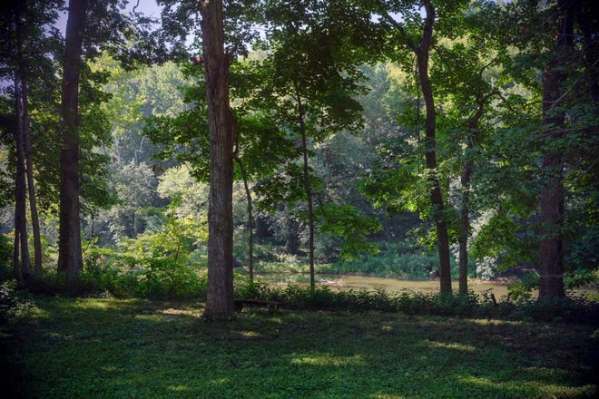 A look at the yet-to-be-opened Oliver's Woods Nature Preserve in Indianapolis on Thursday, Aug. 2, 2018.