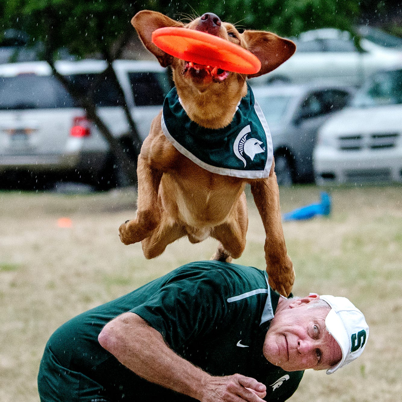 How Zeke the Wonderdog became a Michigan State tradition