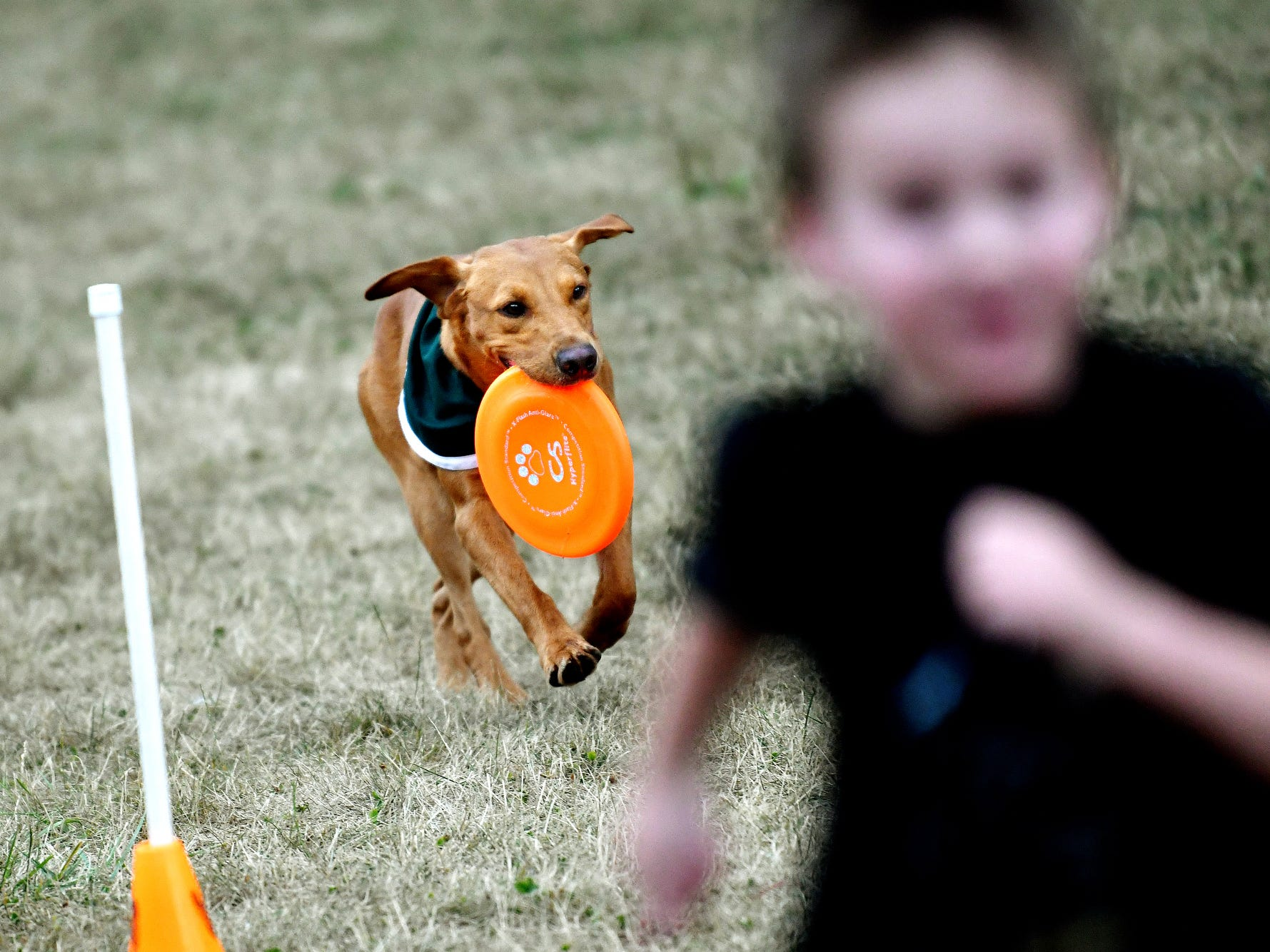 Zeke the Wonderdog IV tries to beat a child in a race during Play in the Park on Tuesday, July 31, 2018, at Valley Court Park in East Lansing.