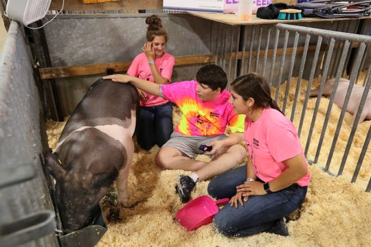 The All for One Swine Show gives youth with intellectual disabilities the chance to show a pig at Wisconsin State Fair with the help of mentors. Here Elysa Doherty (right), 19,  and her sister Isabelle Doherty (left), 14, both of Johnson Creek, mentor Alex Kuri (center), 17, of Muskego on caring for a pig named Oakley.
