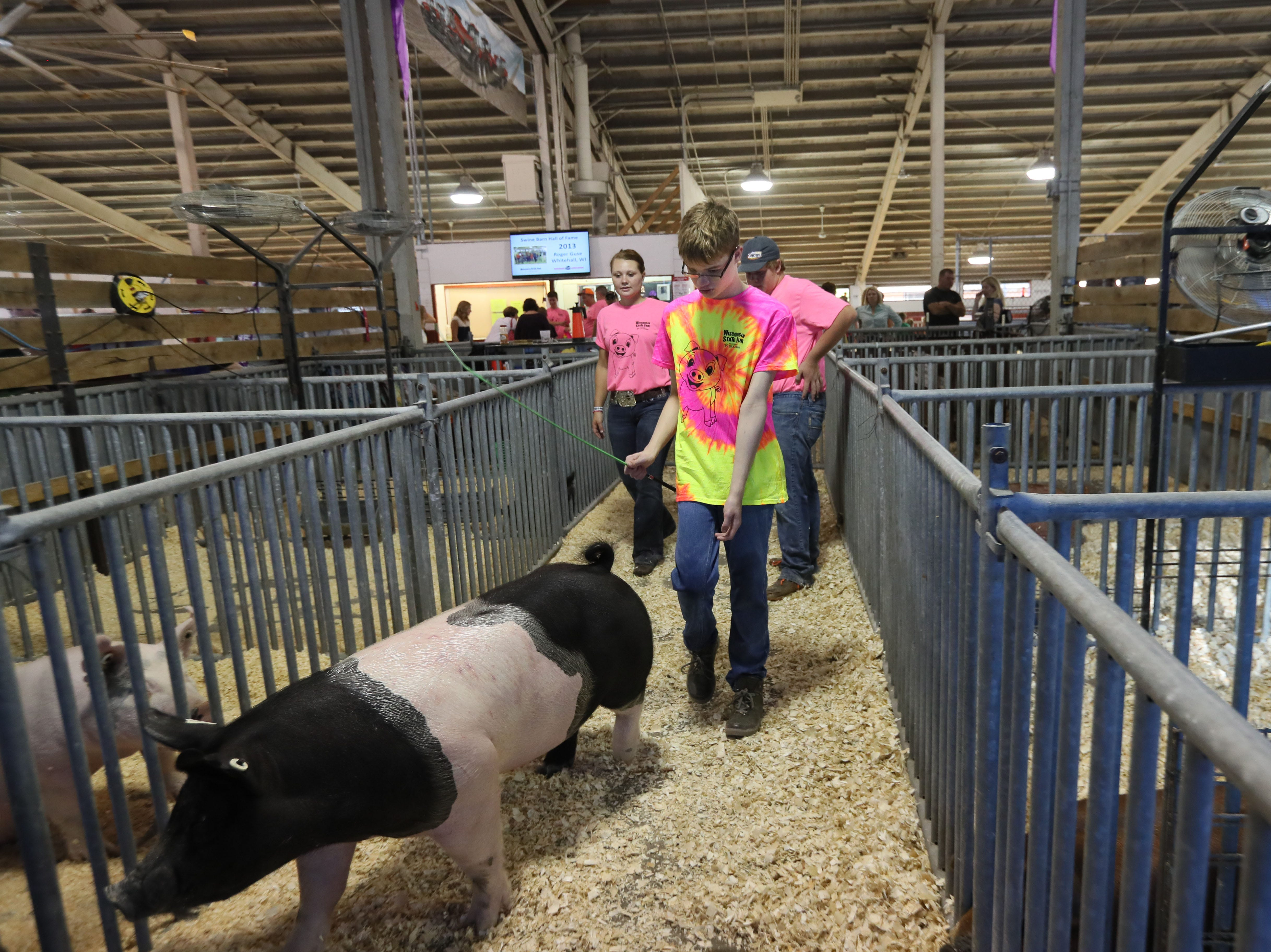 Braeden Allen, 15, of Hales Corners gets tips on showing a pig named Boots from his mentors Caitlyn Wileman (rear left), 20, of Janesville, and Tyler Cross (rear right), 16, of Poynette (rear right), at Wisconsin State Fair.